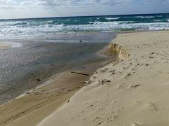 琴ヶ浜の鳴り砂 綺麗な砂浜でした。