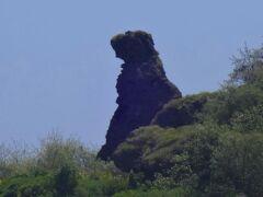 そう、これはゴジラ!?  いや、熊岩(ベア ロック)だそうです。  アグファジャン湾の岬の先端に立っています。