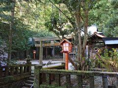 熊野神社ビュー。 部屋の窓を開けて拝む。