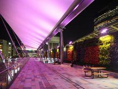 21時、東京駅八重洲南口、GRANROOFから。 バスターミナルのすぐ上にある。  南口を出てすぐのお弁当屋さんで半額セールしてて、思わず買ってしまったお弁当、ここで食べましょ。