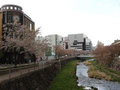 朝9時に新宿を出発し、松本駅には1時前に到着しました。 駅ビルで昼食をとり、松本城に歩いて向かいましたが、途中の時計博物館脇の女鳥羽川沿いの桜は、どうにか咲き残っていました。