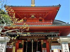 成福院の前に出た。 やっとお寺らしくなってきた。 (・∀・)  くりんが輝いている。  4月29日は、お祭りがあるようだ。