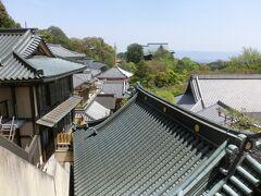 初夏を思わせる日差しに照らされて、屋根が輝いていた。
