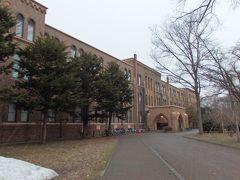 北海道大学総合博物館へ到着。