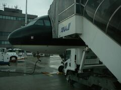 福岡空港到着 雨が降りだしていましたが ・・福岡空港やっぱり沖止め・・ ここからは福岡から熊本へ陸路で移動です