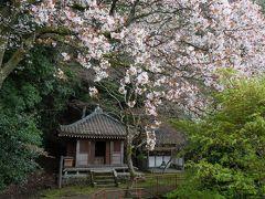 大崎寺の阿弥陀堂。天井は「安土の血天井」、今も湿度が高い時期は血の跡が見えるそうです。