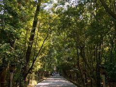 この日はレンタカーを借り、櫻井・室生方面をドライブしながら巡ります。 まず訪れたのは大神神社。 鳥居も駐車場も立派でした。
