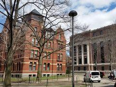 次はハーバード大学へ行きます。