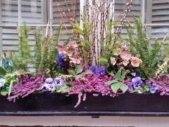 家々の前のお花