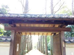 大田黒公園(入口の門)  荻窪駅南口から、静かな住宅街を歩くこと約10分  開園(9:00)とともに到着 どっしりとした銀杏並木がいい~