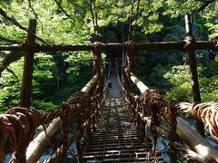 シラクチカズラを編み連ねて作られた長さ45mの「祖谷のかずら橋」。平家の落人が追手から逃れるためにいつでも切り落とせるように作ったとも言われているそうです。弘法大師が村人のために作ったという説もあるとか。