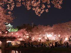 春になると行きたくなる岡崎公園の夜桜です。 ライトアップされたお城をバックに見る桜は最高です。 色々な場所へ夜桜を見に行ったことがありますが、ここが一番好きです。
