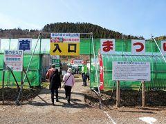 入口で協力費を払い入場です。( https://www.city.kashiwazaki.lg.jp/n_chiki/kanko/miru/kekan/haru/1502200856.html )