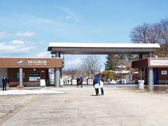 越後丘陵公園(   http://echigo-park.jp/ )に到着。大崎雪割草の里と雪国植物園、そして越後丘陵公園は「えちご雪割草街道」(  http://www.nagaoka-navi.or.jp/news/15195.html  )と言います。