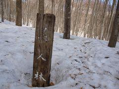 いつもの道が雪のため通行止めのため違う道からの到着です。道路から美人林の所まで雪(除雪してなく大変でした)の上を歩きました。(     http://www.tokamachishikankou.jp/bijinbayashi/  )