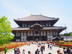東大寺! 10年ぶりくらいに見ましたが、このアングルは覚えがある!  修学旅行ぶりでしたが、あの時よりやっぱり人増えていそうですね。