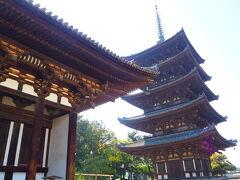修学旅行ぶりに奈良市内観光。 興福寺の五重塔はやっぱりすごい。  たまたま国宝展やってたので見学もしました。