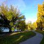 黄葉のニュージーランド南島 ①(クィーンズタウン~ベネッツブラフ~グレノーキーから奥へ)