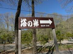 道の駅しもごうから約13km。15分で塔のへつりに到着。