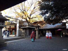 乃木神社、入ろうと思ったら通行止め。