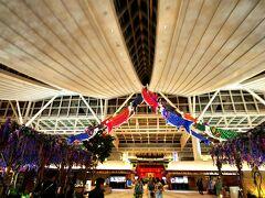 羽田空港国際線です♪(^o^)季節のディスプレイが、藤の花と鯉のぼりになってます♪