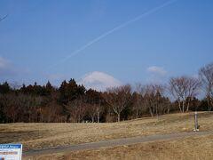 新東名を走り名古屋から東京へ。足柄サービスエリアからきれいな富士山が見えます。