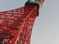 東京タワーもいつもとは違ってみえます。  こんな角度ではなかなか見られません。^^