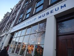 チューリップ博物館
