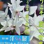 第53回 洋らん展&花フェスタ記念公園の花達
