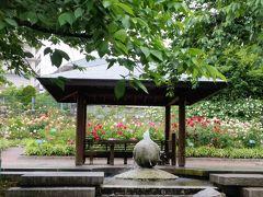 石橋文化センター春のバラフェア