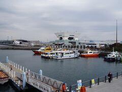 この先に大型客船の埠頭があります。時間があれば行ってみたかったですが、公園のようになっていました。