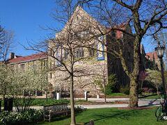 シカゴ大学散策に向かいました。すぐ近くに博物館。