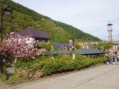 朝食は8時からでまだ時間があるので、ちょっと朝のお散歩へ。  山田温泉の中心地、大湯です。