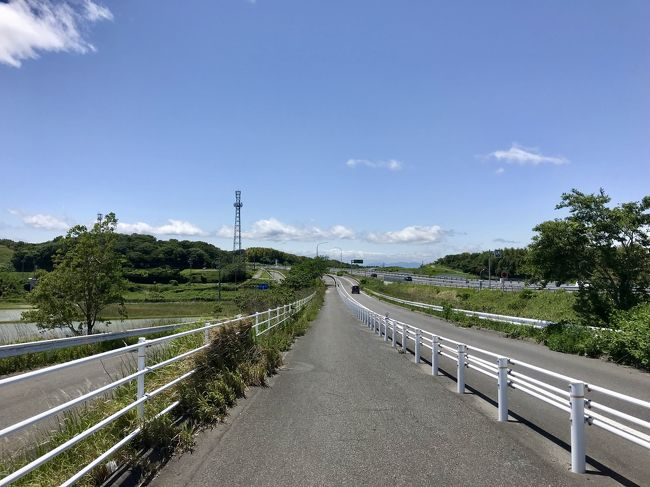 知多 半島 サイクリング ロード