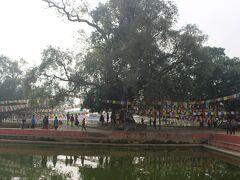 聖堂の前にある池です。