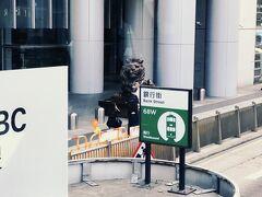 昨晩来た、香港上海銀行のライオン様たちも!! さらにパワーを感じます!!