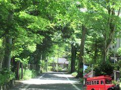 軽井沢のメインストリート、アウトレット前を走り、 旧軽のはしにある軽井沢会テニスコート(天皇陛下と美智子皇后さまの出会いの場)の横を通ると、こんな道の木立。  ※車やタクシーでない場合は歩くか(当然辛い)軽井沢の赤バス(軽井沢交通バス)(万平ホテル⇔見晴台)画像の右下 で通れます。 http://www.karuizawa-on.com/kkbc/