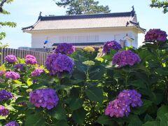 紫陽花のバックは銅門