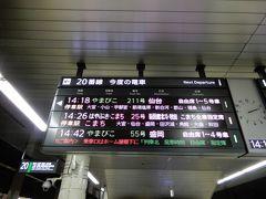上野駅では、新幹線改札内の売店で、かみさんが息子のお土産に東京バナナのパンダバージョンなど購入。 息子にお土産など要らないと思うのになー。 母親心か。  14:26発 はやぶさ25号に乗ります。