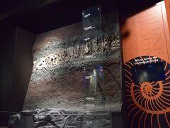 【熊本観光-①】1日目 最初は、御船町恐竜博物館
