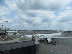 JALで アメリカに出発です  あっ 見えてる! 久しぶりに 贅沢に日系航空会社利用  うれしいです