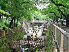 最初に来たのは王子神社と隣接する音無親水公園(https://www.city.kita.tokyo.jp/d-douro/bunka/koenichiran/otonashishinsui.html)  石神井川の旧流路に整備された公園で日本都市公園百選にも選ばれているそうです。