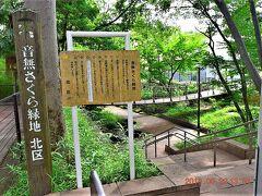 音無さくら緑地(https://parkful.net/2015/08/otonashi-greenpark/)に到着。