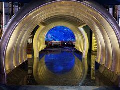 今夜のディナーは『ネイサン・アウトロー・アル・マハラ』です。 黄金のトンネルを抜けると・・・