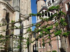 聖母教会  ここにはミケランジェロの「聖母子像」があるそうですが建物の外観を見ただけでした。