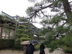 法隆寺を後にしてすぐ隣の中宮寺へ