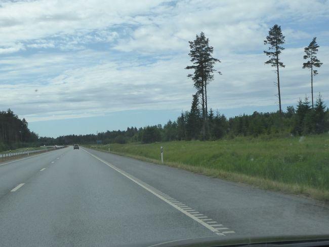 エストニアのバルヌ、タルトゥ、...