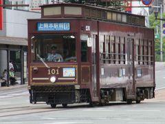 以前行ったときはあまり花の種類がなかった水前寺公園へ行ってみることに。先ほど熊本駅で購入した市電の1日乗車券、\500で乗り放題って使わない手は無いですね。