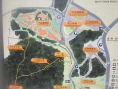 ここから円山公園までは徒歩で向かいます。  当初は動物園まで直行する予定でしたが…。