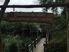 Elephant が保護されているエリア